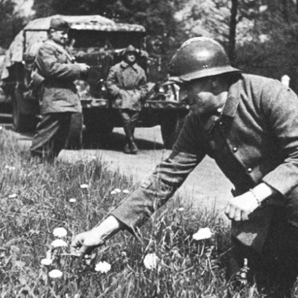 , La Seconde Guerre mondiale